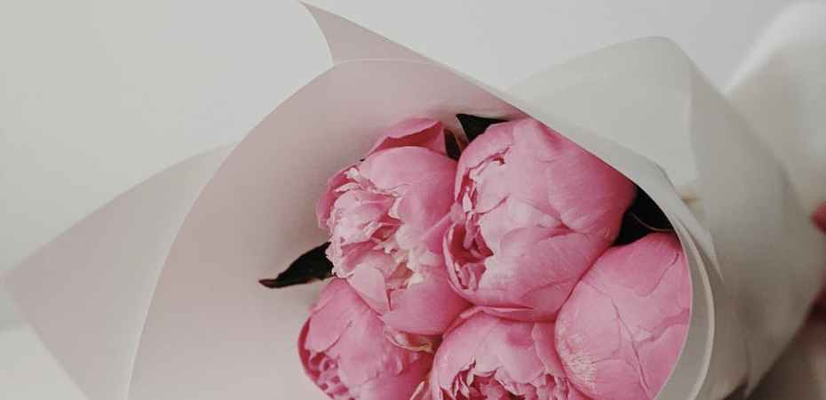 photo of pink flowers